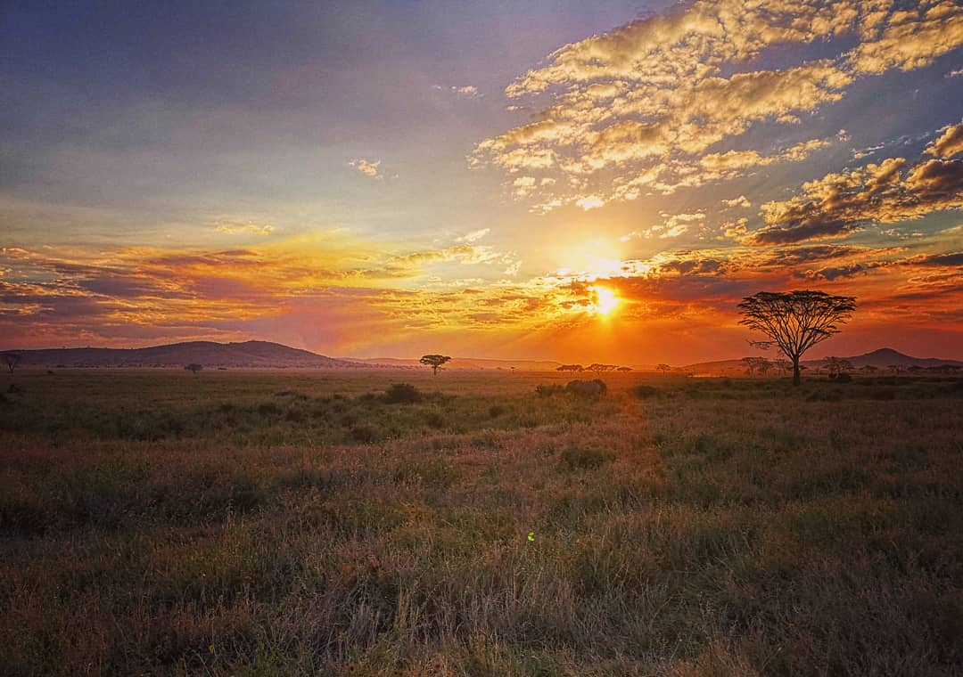 Views from the Serengeti